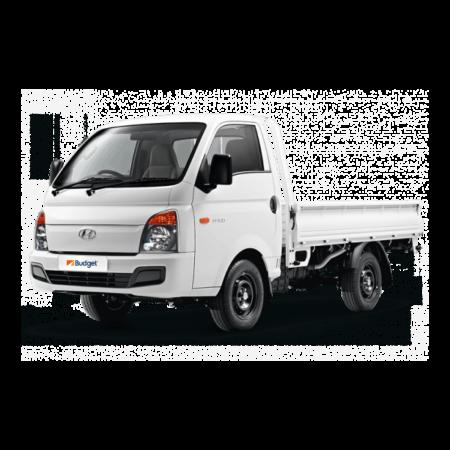 Hyundai-100